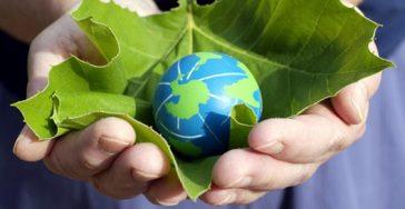 Giornata dell'Ambiente: partecipiamo!