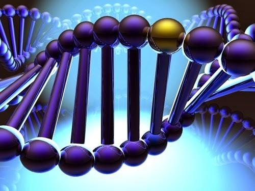 Scoperti collegamenti genetici tra 5 disturbi psichiatrici: autismo, schizofrenia, disturbo bipolare, depressione e alcolismo