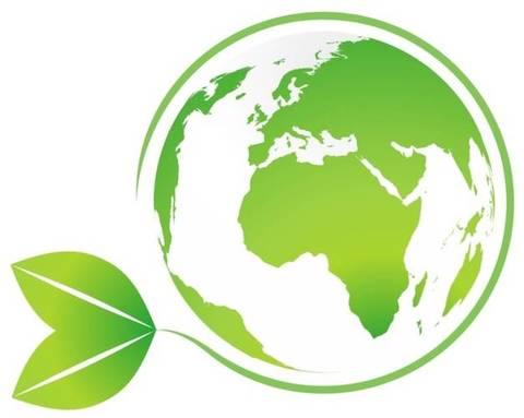 """Biocarburanti: il futuro è davvero """"verde""""?"""