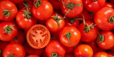 Dieta del pomodoro: perdere 2 chili in 5 giorni