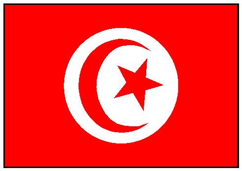 """La Tunisia """"perdona"""" Matteo Salvini"""