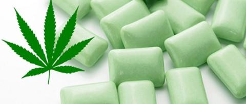 Gomma da masticare alla cannabis per combattere la fibromalgia