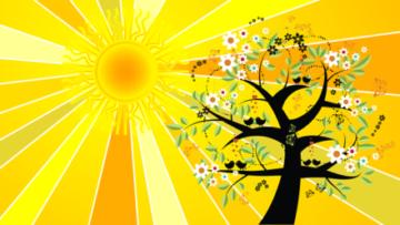 Solstizio d'estate: cos'è, quando si verifica nel 2019, significato e feste per il mondo