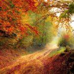 FAI: ricominciano le aperture straordinarie con le Giornate d'Autunno