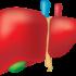 Disintossicazione del fegato: tutto quello che devi conoscere