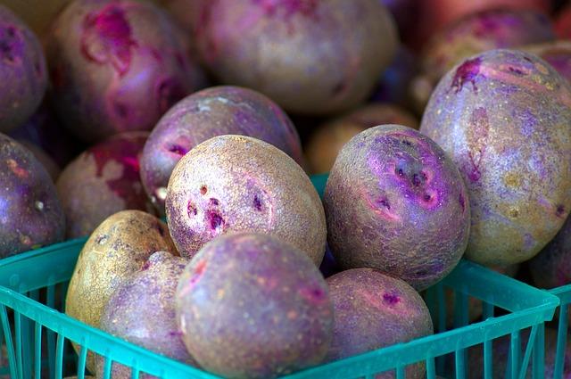 Patate viola: quali sono le loro caratteristiche e come usarle in cucina
