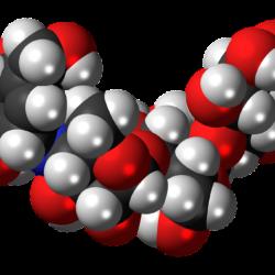 oligosaccaridi benefici
