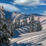 Neve: fino a 5 cm in pianura e oltre 60 sull'arco alpino di Piemonte e Valle D'Aosta