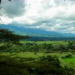 Savane (praterie del Sud America): è possibile visitarle? E quando?