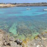 Aeroporto Lampedusa: come arrivarci? Quali sono i suoi contatti?
